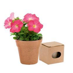 Flowerpot Advert